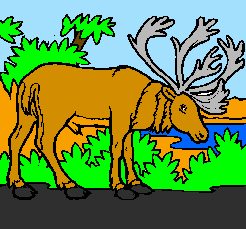 Coloring page Elk painted bykatie