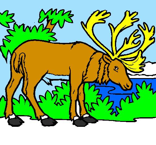Coloring page Elk painted bygael