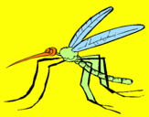Coloring page Mosquito painted byJayde