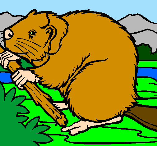 Coloring page Beaver  painted byDucky The Duck