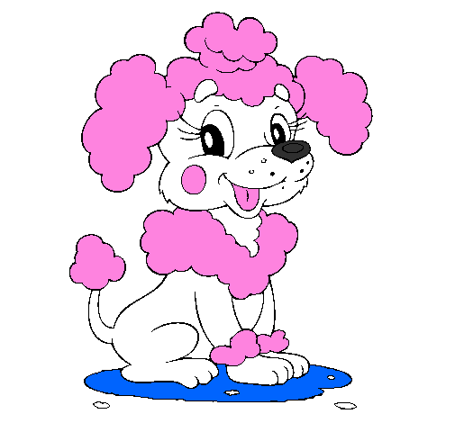 Colored page Poodle painted by Princess