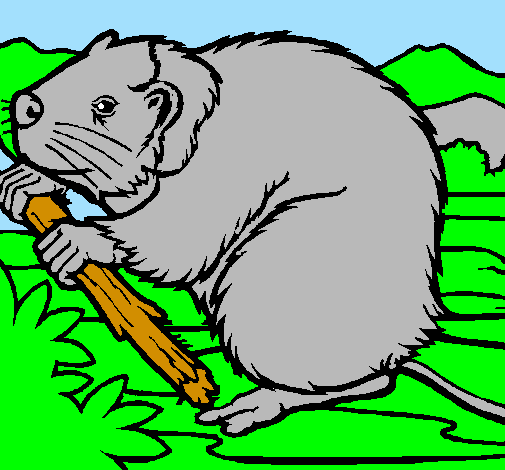 Coloring page Beaver  painted byMarga