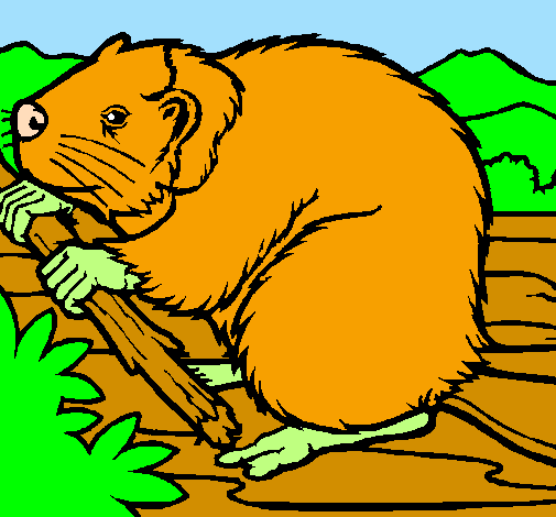 Coloring page Beaver  painted byMaria