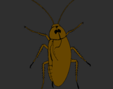 Coloring page Large cockroach painted byJuan Pablo