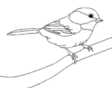 Coloring page Little bird painted byyuan