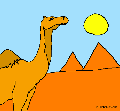 Coloring page Camel painted byPeter