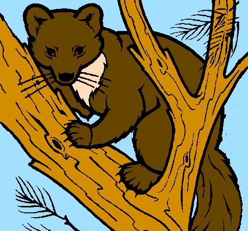 Coloring page Pine marten in tree painted bynm