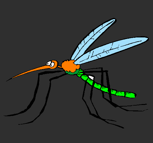Coloring page Mosquito painted bylautaro