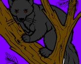Coloring page Pine marten in tree painted byDanthon ruan mira