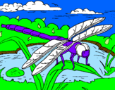 Coloring page Dragonfly painted bymoises
