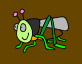 Coloring page Grasshopper 2 painted byandres