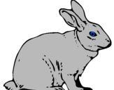 Coloring page Hare painted bylzjdb hyhgdhhhajjyhdhyhay