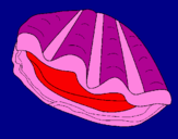 Coloring page Clam painted byjuaquni