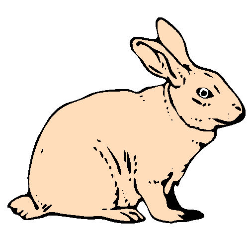 Coloring page Hare painted bygabrielito