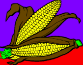 Coloring page Corncob painted byArmands