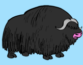 Coloring page Bison painted bypedro