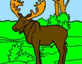 Coloring page Moose painted bymorgan miller