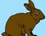 Coloring page Hare painted bypedro