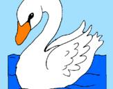 Coloring page Swan painted byLaura  Kaori