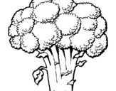 Coloring page Broccoli painted bydf