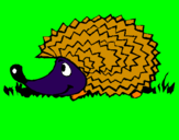 Coloring page Hedgehog painted bysavannah