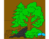 Coloring page Forest painted byNefera
