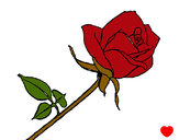 Coloring page Rose painted byzachsbaby