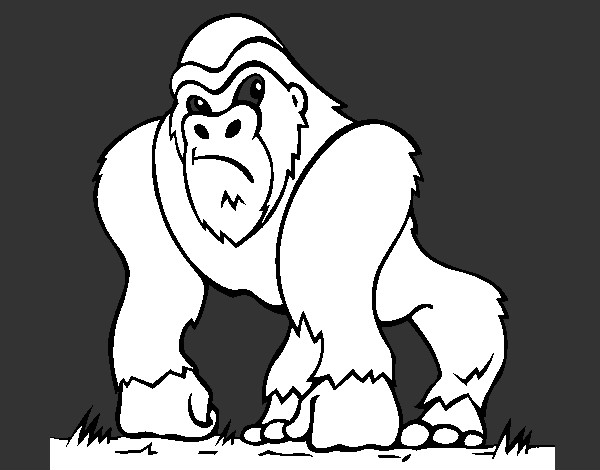 Coloring page Gorilla painted byheavenly
