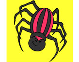 Coloring page Spider painted byKynKyn