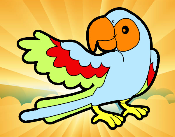 Coloring page Parrot with wideout painted byems76