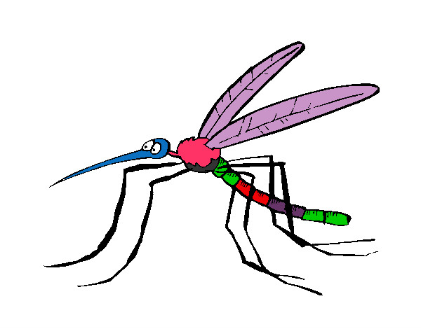 Mosquitos Coloring Pages