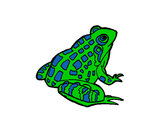 Coloring page Frog painted byeden