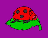 Coloring page Ladybird on a leaf painted byeden