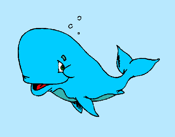 Coloring page Bashful whale painted byBigricxi