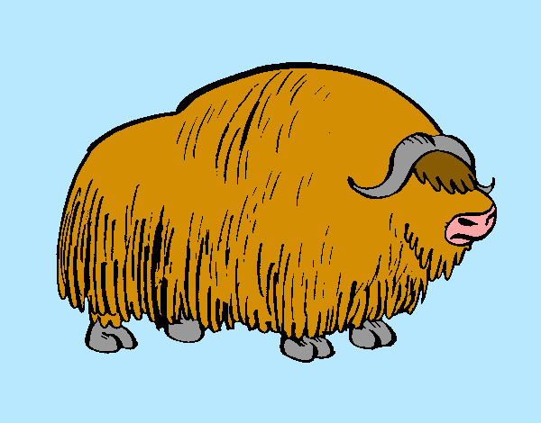 Coloring page Bison painted byBigricxi