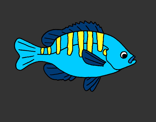 Coloring page Fish 4a painted byBigricxi