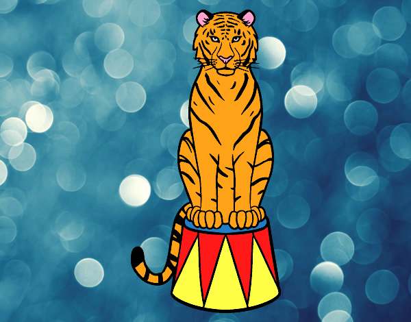 Colored page Tiger of circus painted by ShelbyGee