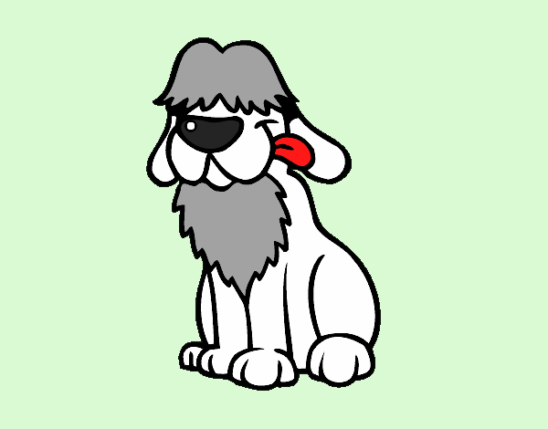 sheep dog coloring pages - photo#35