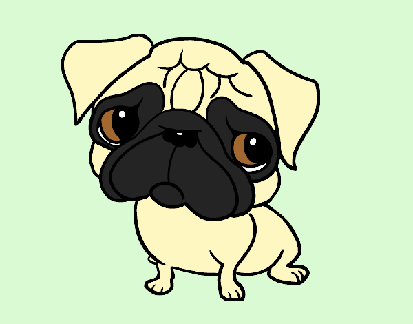 Coloring page Pug painted byShelbyGee