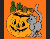 Pumpkin and cat