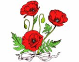 Coloring page Wild poppies painted bytwist