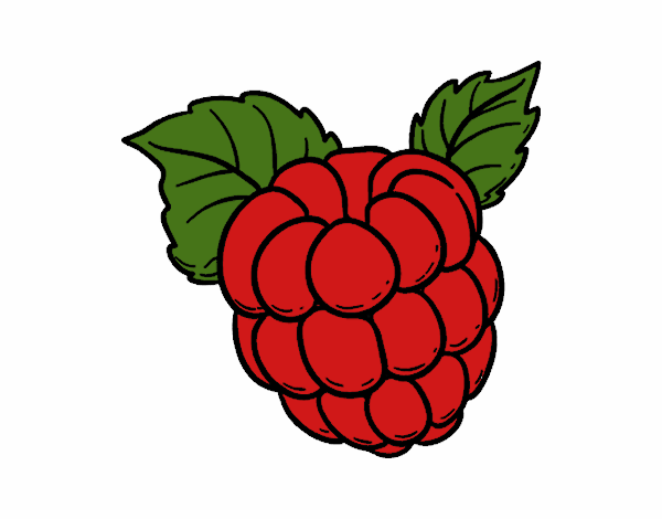 colored page raspberry painteduser not registered