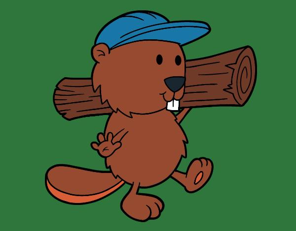 Beaver with cap