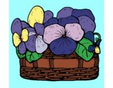 Coloring page Basket of flowers 12 painted bysmaxwell
