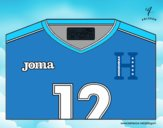 Honduras World Cup 2014 t-shirt