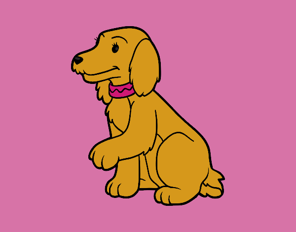 Coloring page Cocker Spaniel painted byKArenLee