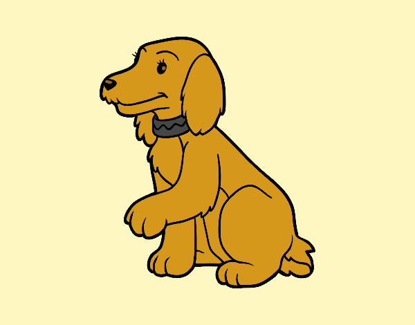 Coloring page Cocker Spaniel painted bylorna
