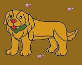 Pigment the dog