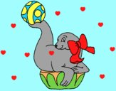 Coloring page Seal playing ball painted byAnia