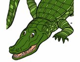 Coloring page Crocodile painted byLeigh